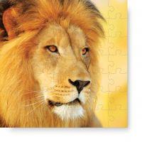 Puzzle Leon